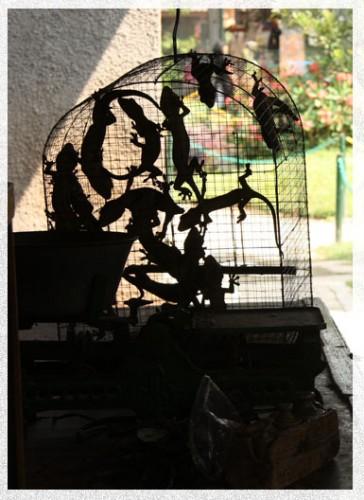 birdmarket2.jpg
